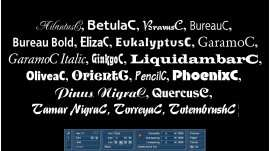 Fontpack Cyrillic