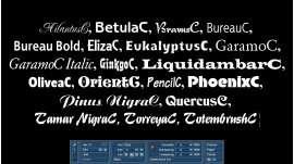 Schriftenpaket 5 Kyrillisch für Bogart Windows
